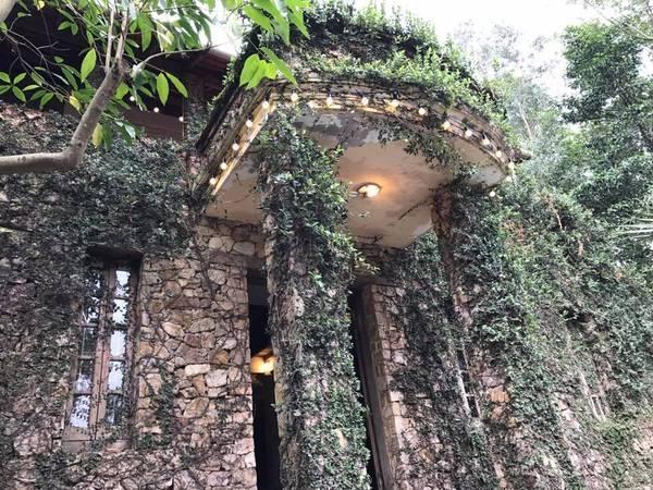 Jungle-house-bac-ninh-ivivu-16