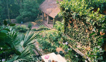 Jungle-house-bac-ninh-ivivu-20