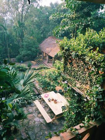 Jungle-house-bac-ninh-ivivu-20