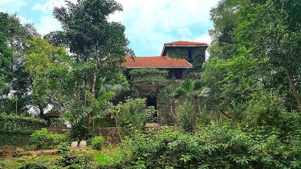 Jungle-house-bac-ninh-ivivu-6