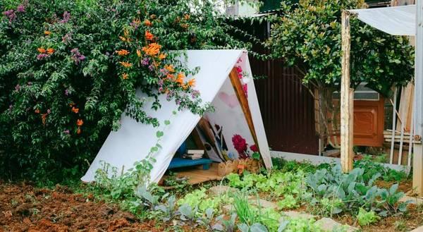 Vanda Garden Hill Da-lat-ivivu-12