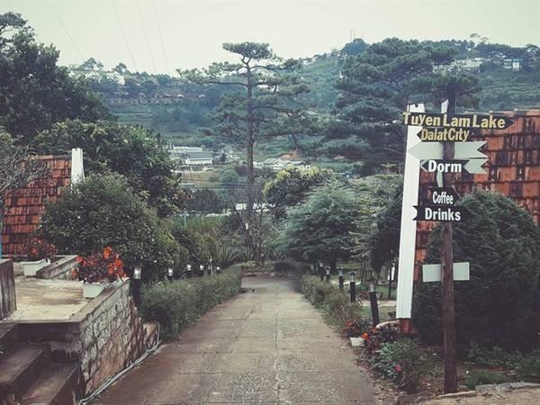 Vanda Garden Hill Da-lat-ivivu-19