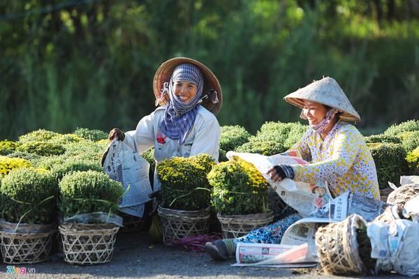 Nơi đây ươm mầm gần 2.000 loại hoa kiểng với diện tích trồng hơn 85 ha, và có gần 2.000 hộ dân làm nghề.