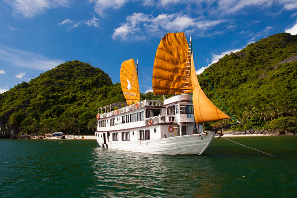 Sau khi rời Hạ Long, đôi tình nhân đi trực thăng lên Sapa, trước đó, họ cùng đặt nhiều khách sạn nổi tiếng như Châu Long, Victoria Sapa Resort và Công Đoàn... nhưng cuối cùng lại chọn khu nghỉ Topas Ecolodege.