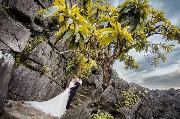 Hang Múa với vẻ đẹp sơn thủy hữu tình, phong cảnh nên thơ vừa có mây vừa có núi đã làm say đắm bao lữ khách.