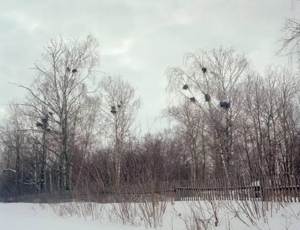 Bất ngờ với cuộc sống bí ẩn huyền bí của bộ tộc Mari nước Nga