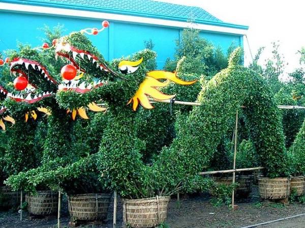 Một trong những vườn kiểng nổi tiếng đó là Vườn kiểng Năm Công của nghệ nhân Năn Công, thuộc xã Hưng Khánh Trung B, 18 km, nằm sát Quốc lộ 57. Tại đây các loại kiểng được tạo hình kiểu dáng độc đáo khác nhau và có giá trị thẩm mỹ cao. Ảnh: caycanhnamcong.com.vn