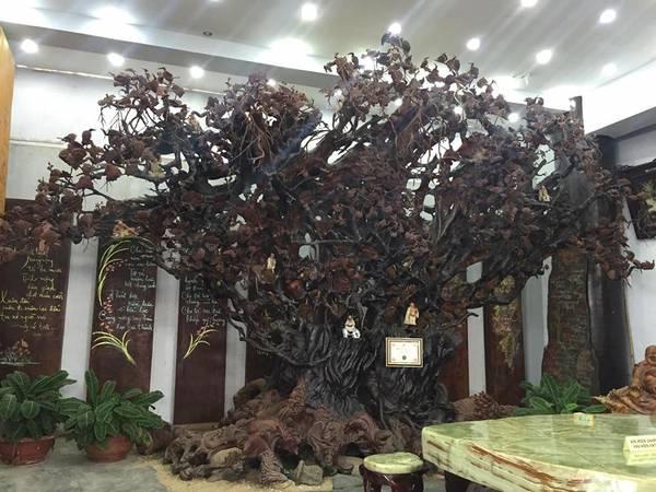 Có rất nhiều những điểm đặc biệt ở ngôi chùa này để du khách khám phá.