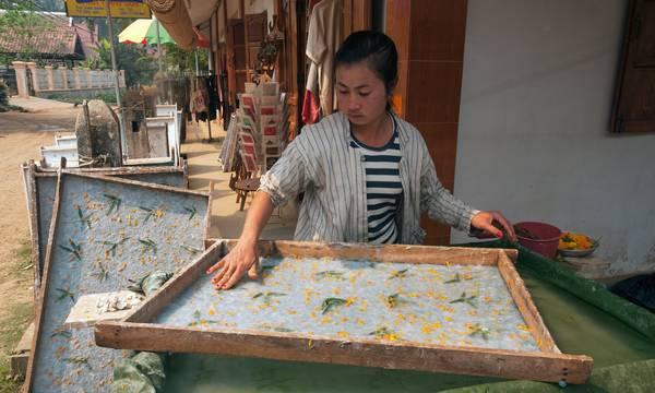 Cô gái trẻ đang làm giấy saa tại Ban Xang Khong theo truyền thống của gia đình. Ảnh: John Elk III/Getty Images/Lonely Planet Images