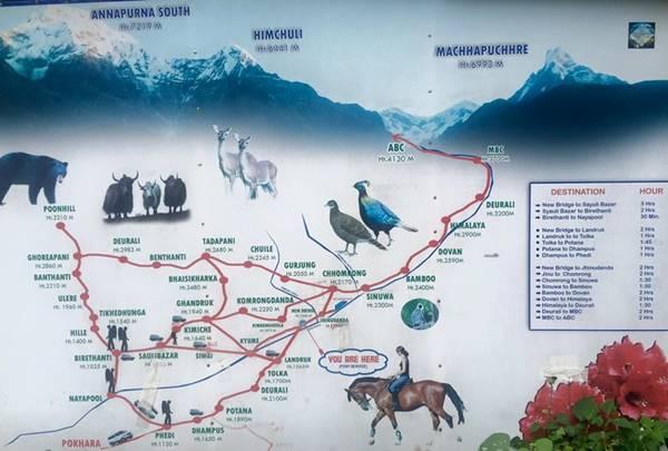 Bản đồ chi tiết cung PoonHill - Annapurna Base Camp.