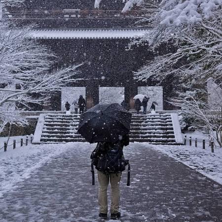 Tận hưởng khung cảnh đẹp tuyệt hiếm có trong năm ở Kyoto