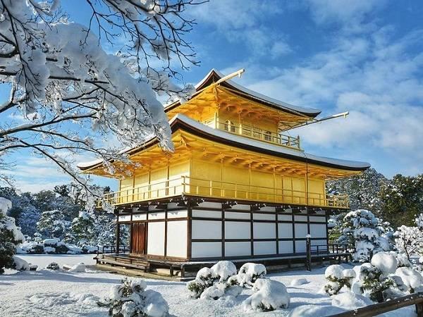 Màu sơn dát vàng của ngôi chùa Phật giáo Kinkakuji (Kim Các Tự, tức chùa Gác Vàng) sáng bừng giữa nền trời xanh, mây trắng, tuyết tinh tươm