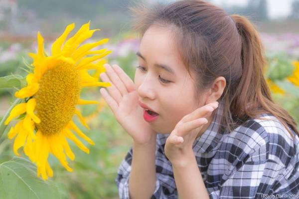 Thiên đường hoa Quảng La điểm check-in mới toanh của giới trẻ Quảng Ninh.