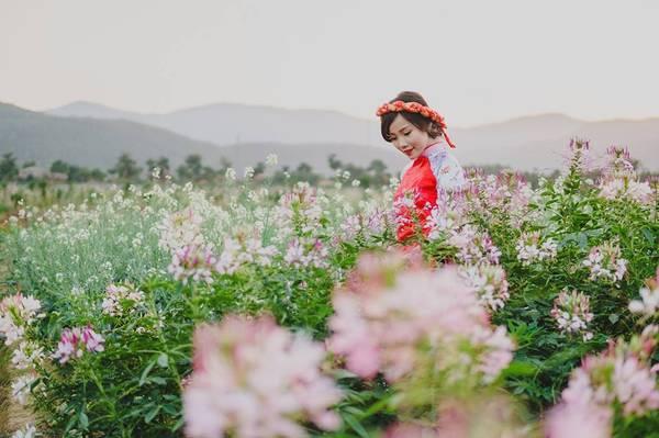 Thiên đường hoa Quảng La trồng rất nhiều loại hoa đặc biệt đảm bảo cho bạn có những bức ảnh lung linh bên những cánh hoa tươi thắm.