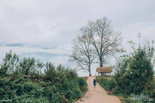 Y Tý  Những con đường dài hun hút, phủ trắng mây phía xa