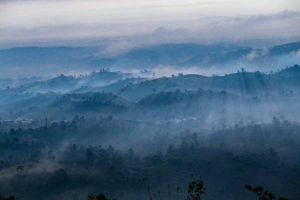 Vào những buổi sớm mai mây tràn dần về phủ khắp núi rừng, những tia nắng xuyên qua tạo nên bức tranh thiên nhiên kỳ ảo.