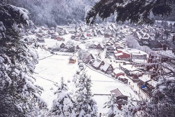 Shirakawago là ngôi làng cổ nhất của xứ Phù Tang, nằm ở phía bắc vùng Tokai, tỉnh Gifu. Những ngày đầu năm mới cũng là thời điểm đẹp nhất bởi mọi nơi đều bao phủ trong tuyết trắng. Tuyết chưa quá dày nên du khách có thể thấy được nét đặc trưng của vùng đất đầy mê hoặc.