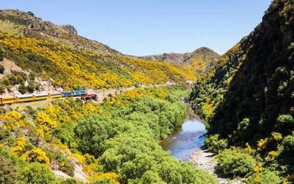 Ngoài ra, con đường mòn Milford Trail ở phía Nam New Zealand được nhà thơ nổi tiếng Blanche Baughan ca ngợi là con đường đi bộ đẹp nhất trên thế giới. Con đường này chỉ dài 53km nhưng đi qua thác nước cao nhất New Zealand, cầu treo, núi, thung lũng và hồ nước xanh thẳm.