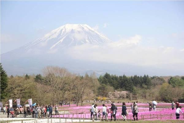 Núi Phú Sĩ. Ảnh: San San