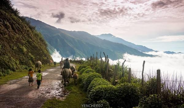 Con đường từ thị trấn Bắc Yên lên Tà Xùa dài 13 km. Trên đường, bạn có thể ngắm được toàn cảnh thị trấn Bắc Yên ẩn hiện trong những đám mây lơ lửng vắt qua núi. Ảnh: Hai Yen Chu.