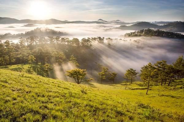 Thành phố Đà Lạt (Lâm Đồng) không chỉ làm mê đắm lòng người với sắc hoa rực rỡ, mà còn bởi cảnh sắc thiên nhiên tuyệt đẹp. Còn gì lãng mạn hơn là vào mỗi buổi sáng sớm, được chiêm ngưỡng những ánh nắng trong vắt, xuyên qua biển mây bồng bềnh. Ảnh: Long Quang Le.