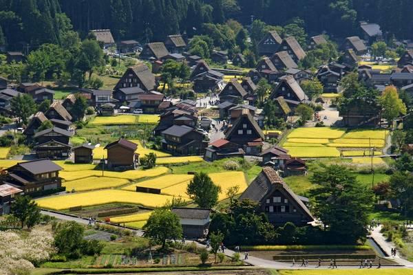 Làng cổ Shirakawa-go nằm ở chân núi Haku-san, tỉnh Gifu, miền Trung Nhật Bản, được UNESCO công nhận là di sản văn thế giới năm 1995. Ảnh: Tokyoromfinder.