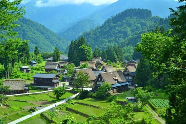 Mùa hè, Shirakawa-go trở nên nhỏ xinh hơn giữa không gian xanh thẳm của ngọn núi Haku-san. Ảnh: Wattention.