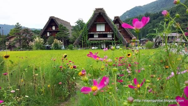 Mùa xuân ngôi làng giống như cô gái nhỏ vui tươi với thời tiết ấm áp và muôn hoa khoe sắc. Ảnh: Stayingglobal.