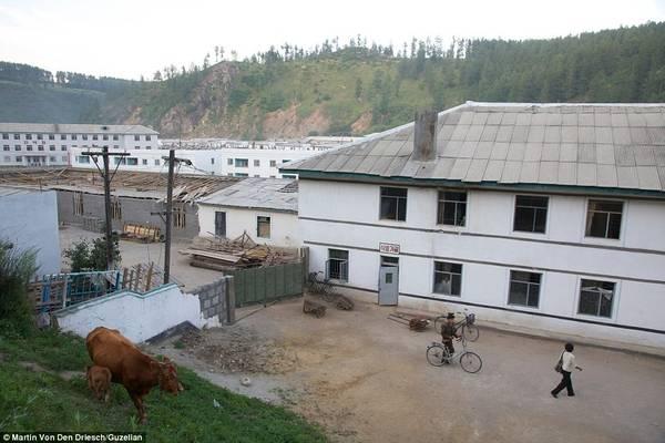 Cuộc sống bình dị tại vùng nông thôn với những hộ gia đình chăn nuôi gia súc và di chuyển bằng xe đạp.