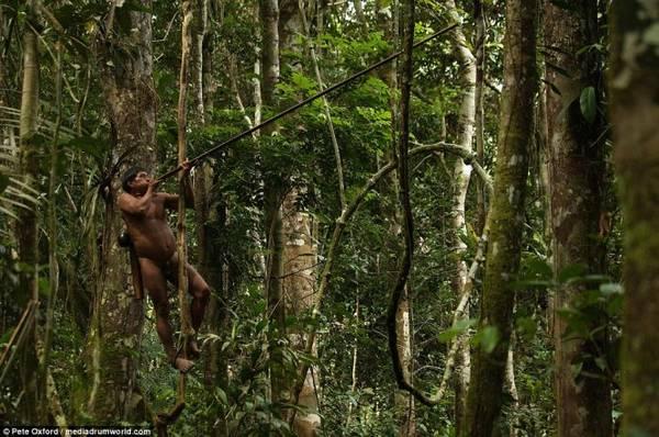 Bộ lạc này săn động vật bằng cách thổi phi tiêu tẩm độc