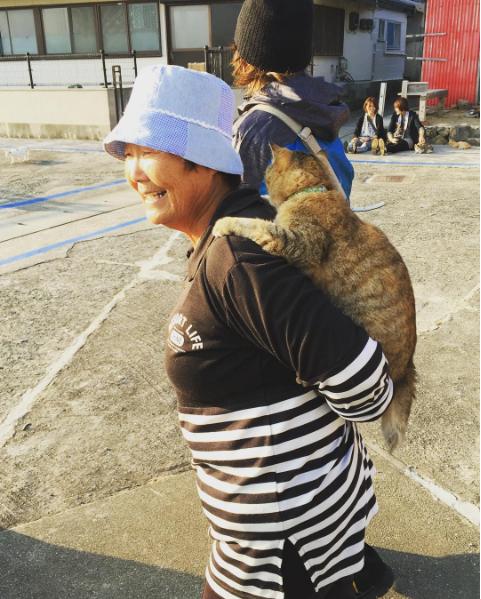 Trên đảo Aoshima chỉ còn những người lớn tuổi sống chủ yếu nhờ lương hưu và hơn 150 con mèo. Ảnh: @sarahsilvatorres