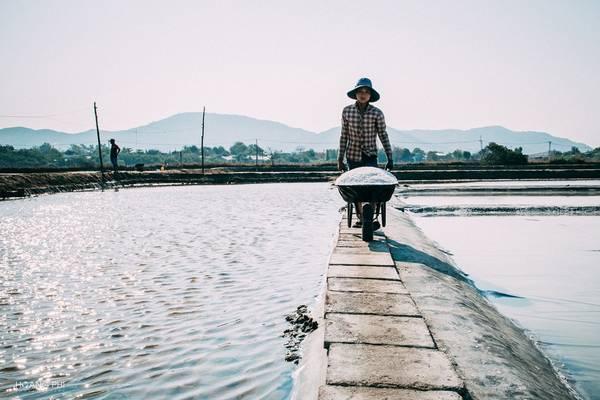 Muối thu hoạch tại đây đa số cung cấp cho Kiên Giang, Phú Quốc... để sản xuất nước mắm, chế biến hải sản, và cho các tàu cá để bảo quản hải sản.