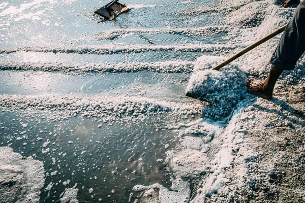 Trong ánh nắng rực rỡ, từng hạt muối đã được tạo hình. Hiện nay giá muối tại Bà Rịa - Vũng Tàu lên được 500 đồng/kg, diêm dân có lãi khoảng 160 đồng/kg. Đây là nguồn động lực để họ tiếp tục bám ruộng.
