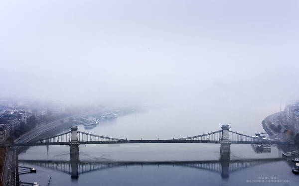 Những cây cầu nằm yên lặng trong sương