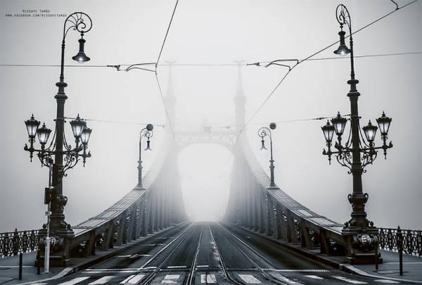 Tamás Rizsavi cho biết hiếm khi sương mù xuống thấp đến mức 'che giấu' những cây cầu ở thành phố, do đó để chụp được những hình ảnh này, anh đã tốn không ít thời gian 'canh me' sương mù