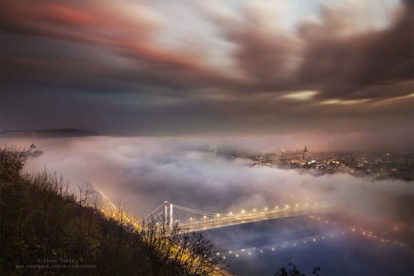 Sương mù như bàn tay đang vươn ra ôm lấy cây cầu bắc