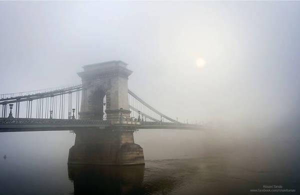 Vẻ đẹp huyền ảo của những cây cầu vào lúc sương mù