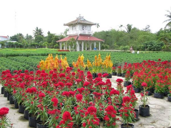 Nhà bia tưởng niệm Trương Vĩnh Ký nằm đối diện với nhà thờ Cái Mơn.Ảnh: diendandulich