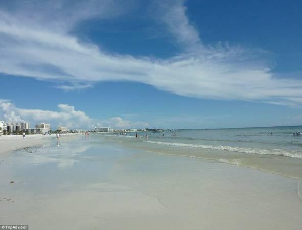 5. Bãi biển Siesta, Siesta Key, Florida, Mỹ - Ảnh: TripAdvisor