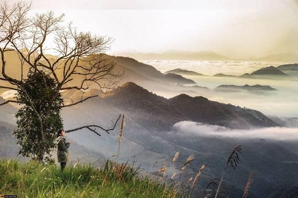 """Từ thị trấn Mường Xén, bạn đi ngược theo tuyến đường Tây Nghệ An khoảng 60 km là đến """"Sa Pa của xứ Nghệ"""" ở xã Mường Lống (Kỳ Sơn). Mường Lống là cổng trời, với những đám mây trắng bồng bềnh trên núi, mây vờn vào tóc làm tôi vỡ òa trong cảm xúc, và cả những loài hoa dại không tên mọc bên đường hòa lẫn vào cái se lạnh của đất trời tạo nên vẻ đẹp nên thơ, không gian mơ màng cho vùng núi cao hùng vĩ."""