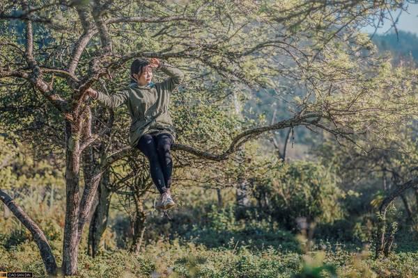 """Du khách có dịp về với biên cương Kỳ Sơn, xứ Nghệ sẽ được tận mắt chứng kiến thiên nhiên hữu tình và những giá trị văn hóa đặc sắc của nhiều đồng bào dân tộc. Bên cạnh vẻ đẹp của Mường Lống, vùng đất này có cửa khẩu quốc tế Nậm Cắn, đỉnh Pu Xai Lai Leng được xem là """"nóc nhà"""" của dãy Trường Sơn hùng vĩ."""