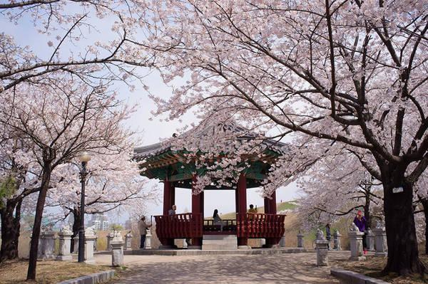 du lịch Nhật Bản, khám phá Nhật Bản,khách sạn Nhật Bản giá rẻ, văn hóa Nhật Bản