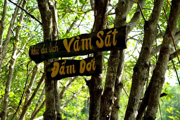 Nằm cách trung tâm TP HCM khoảng một giờ đi ôtô, khu sinh thái Vàm Sát là mảng du lịch xanh gần nhất Sài Gòn.