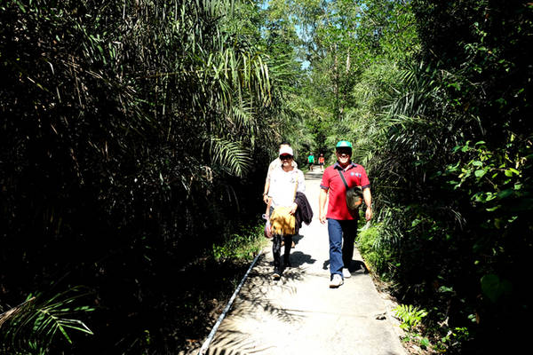 Hầu hết các lối đi đều đã được lót bê tông nhằm giúp du khách không bị bẩn trượt khi mùa mưa về.