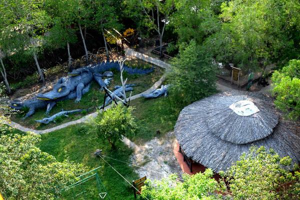 Hoặc lên tháp Tang Bồng cao hàng trăm mét để được ngắm toàn cảnh khu sinh thái.