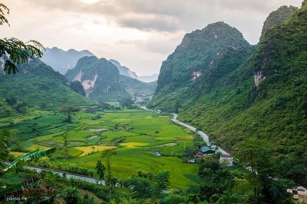 Đèo Mã Phục là một trong 5 điểm đến không thể bỏ qua khi đến Cao Bằng. Đèo quanh co bên những dãy núi đá vôi cao chót vót, ôm gọn thung lũng vào lòng. Mùa lúa chín, cả cung đường bừng lên sắc vàng rực rỡ.