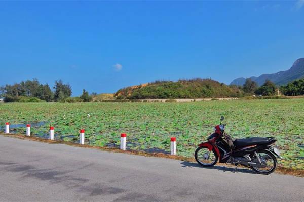 Lang thang trên đảo bằng xe máy là một trong những trải nghiệm rất đáng kể ở Côn Đảo. Ảnh: Thiện Nguyễn