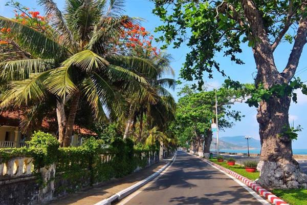 Côn Đảo có những con đường đẹp và vắng. Ảnh: Thiện Nguyễn