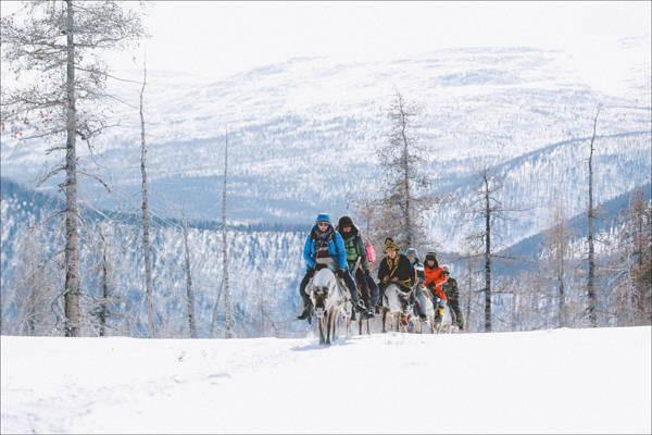 Nung nấu ý định chinh phục Mông Cổ và đi tìm đàn tuần lộc trong truyền thuyết, Thiện Chí cùng những người bạn đã lên kế hoạch, lập nhóm, để biến giấc mơ thành hiện thực. Chuyến hành trình kéo dài nửa tháng, qua những vùng đất đầy khắc nghiệt tuyết phủ trắng, khiến dân phượt nhìn qua cũng đủ đứng ngồi không yên.