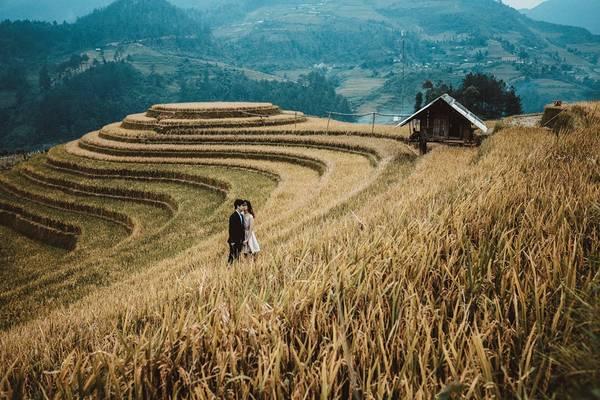 Công việc văn phòng, thời gian eo hẹp không ngăn cản được đam mê của đôi bạn trẻ. Cả hai đã dành những ngày nghỉ ít ỏi để cùng nhau đi khắp Việt Nam để tự chụp những bức ảnh tuyệt đẹp này. Từ miền Nam xa xôi, cả hai đã có những trải nghiệm thật đẹp tại Mù Cang Chải (Yên Bái) giữa mùa lúa chín.